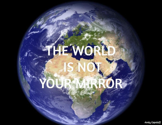 The World is not Your Mirror